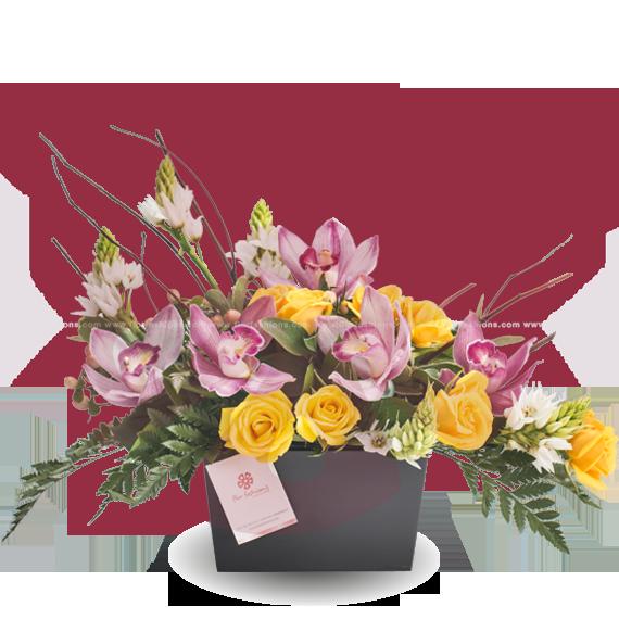Berlin - Arreglos florales Quito, Flores a domicilio Quito, Floristeria Quito, Floreria Quito
