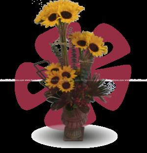 Despertar - Arreglos florales Quito, Flores a domicilio Quito, Floristeria Quito, Floreria Quito