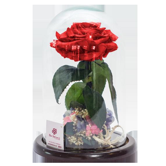 Rosas preservadas, rosas eternas quito, rosas inmortales a domicilio,regalos quito a domicilio
